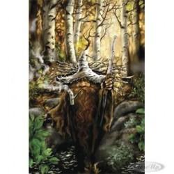 Zwerg mit Birkenhut Poster