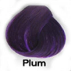 PLUM Directions Haartönung