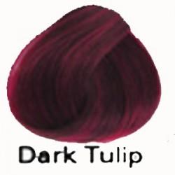 DARK TULIP Directions Haartönung