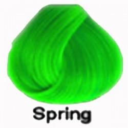 SPRING Directions Haartönung