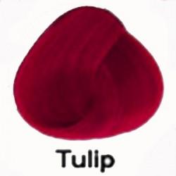 TULIP Directions Haartönung