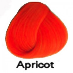 APRICOT Direction Haartönung