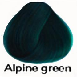 ALPINE GREEN Directions Haartönung