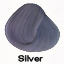 SILVER Directions Haartönung